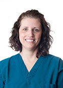 dentist in roselle